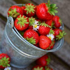 Erdbeer-Power-Kugeln