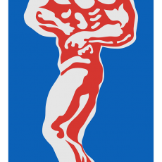 Bodybuilding- Anabolika-Herzinfarkt
