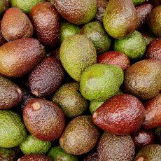 Avocado-Frittata zum Frühstück