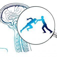 Der Verstand- und wie er das Leben schwerer macht