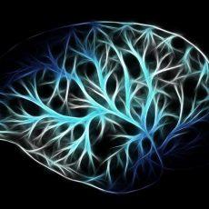 Wenn neurologische Störungen den Körper beeinflussen